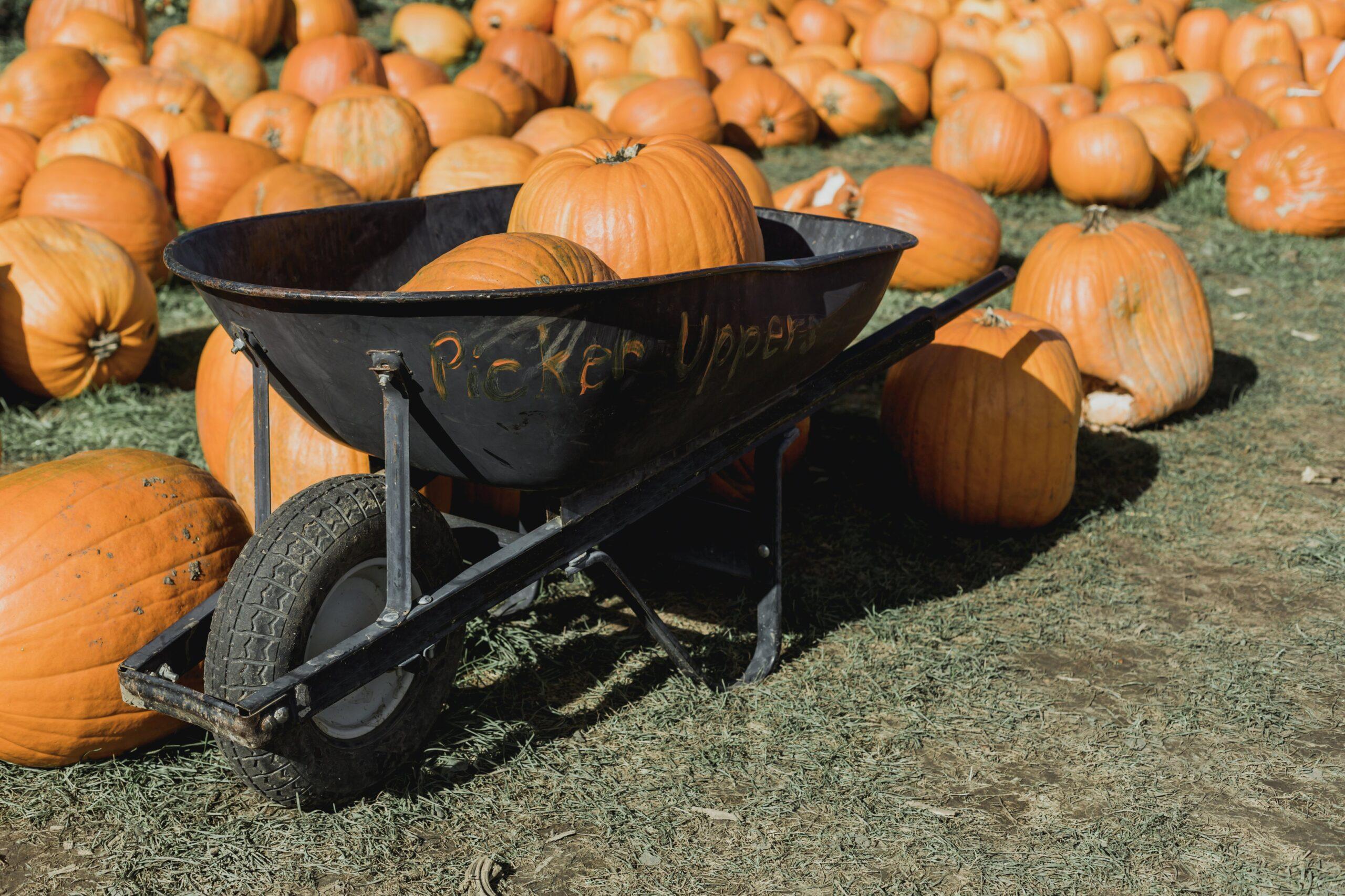 halloween events manchester